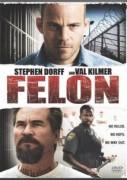 Vykúpenie z väzenia (2008) Felon, Zločinec