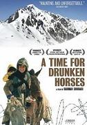Čas opilých koní