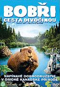 Bobři - cesta divočinou