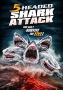 Útok pětihlavého žraloka