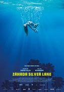 Záhada Silver Lake  online