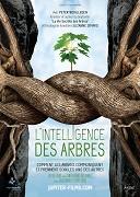 Inteligentní stromy