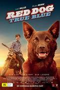 Rudý pes: Blue